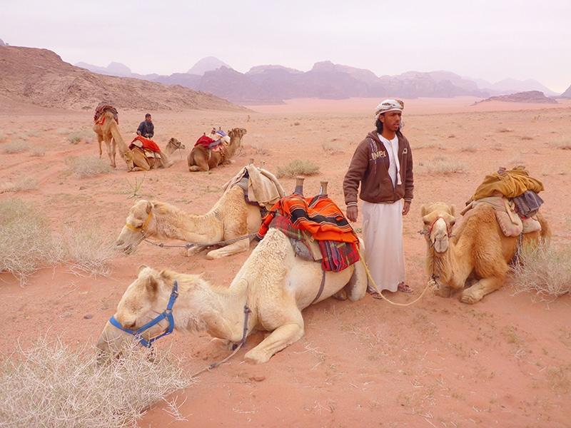 kameelrijden, kameelrijden jordanie, jordanie, jordan, kameelrijden door jordanie, kameelrijden wadi rum, wadi rum, wadi rum jordanie, kamelentocht
