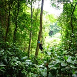 ziplinen door de jungle, Eagle track, eagle track zipline, eagle track thailand, eagle track zipline thailand, chiang mai, wat te doen in chiang mai, thailand, ziplinen, zipline, avontuur, bucket list