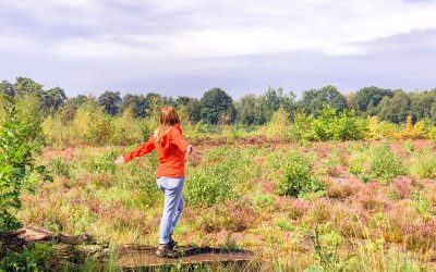 Wandelen rondom de Peelse Heide in Reusel