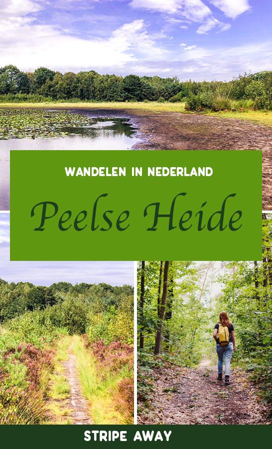 Peelse Heide pinterest pin