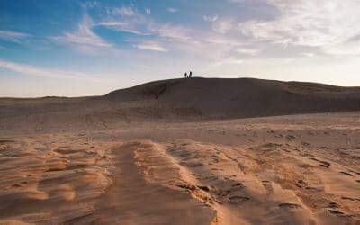 Råbjerg Mile | De wandelende zandduin in Denemarken