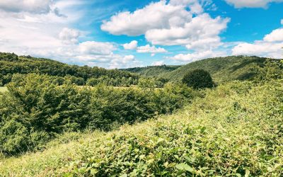 Wandelen in Rendeux in de Ardennen