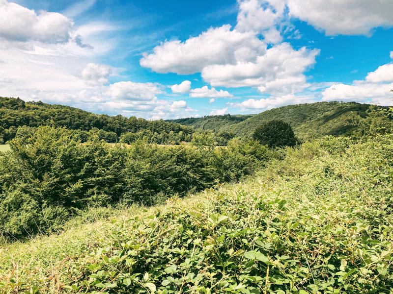 Wandelen Rendeux Ardennen