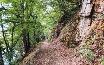 Entre Lesse et Lomme | op avontuur in de Ardennen