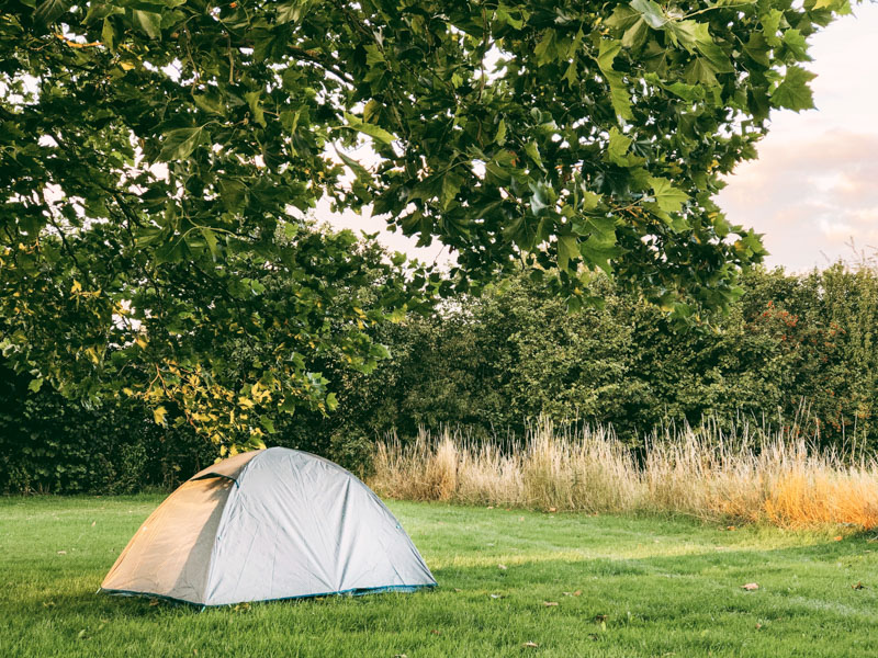 Review Decathlon tent