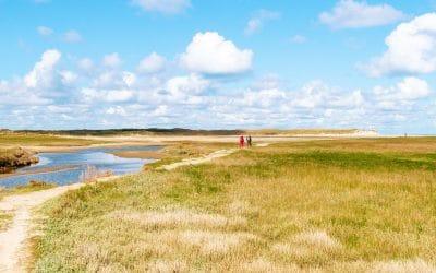 Wandelen door de Slufter: uniek stukje natuur op Texel
