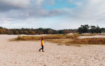 Soesterduinen | wandelen over een zandverstuiving