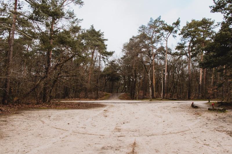Vrachelse Heide