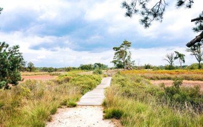 Wandelen in de Malpie: een prachtig stukje natuur