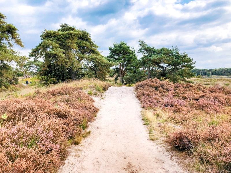 Wandelen Malpie Noord Brabant