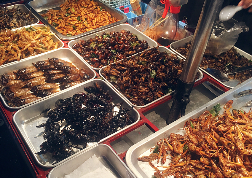 Eten van een Schorpioen op Khao San Road