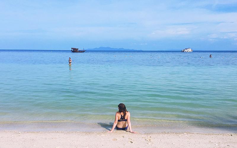 Shark Bay Koh Tao