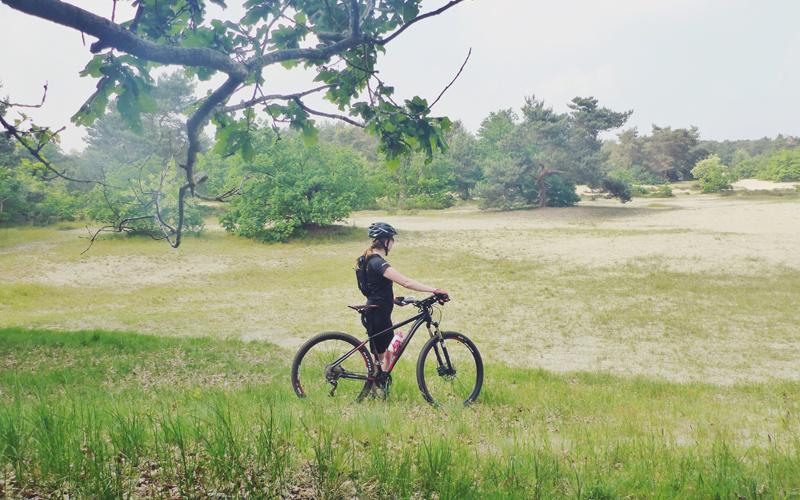 cycle for plan, road to zambia, zambia, kindhuwelijken, plan nederland, fietsen in zambia, fietsen door zambia, fietsen voor het goede doel, mountainbiken, mtb,